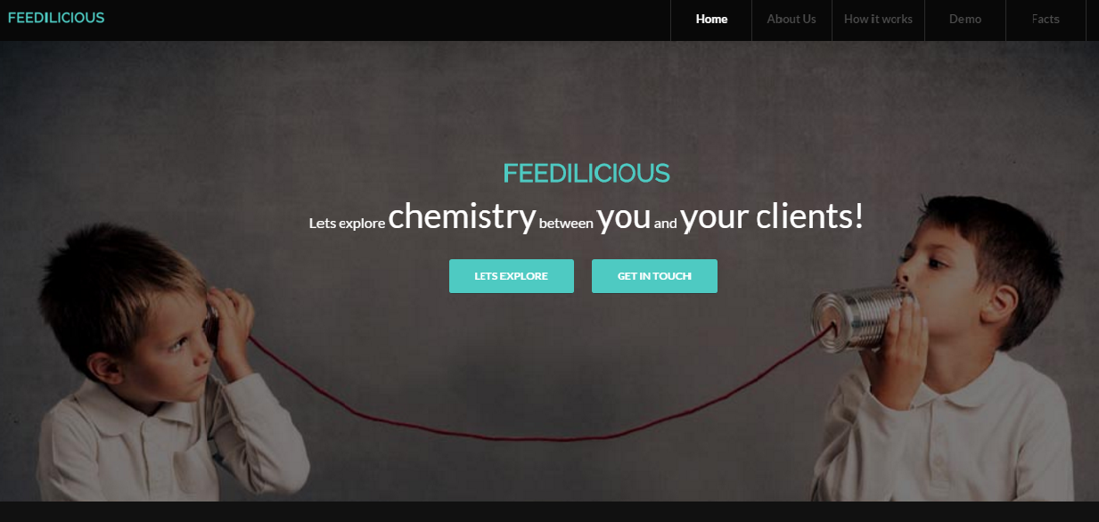 feedilicious website design