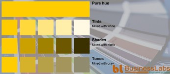 Monochromatic Color scheme of yellow in color psychology